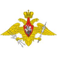 Флаги Военно-Космических Сил